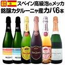 [クーポンで10%OFF]【送料無料】あのドンペリロゼに勝ったロゼ・カバ入り!!スペイン高級泡のメッカ・銘醸カタルーニャ産カバ6本セット!