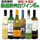 ワイン 【送料無料】第123弾!当店厳選!これぞ極旨辛口白ワイン!『白ワインを存分に楽しむ!』味わい深いスーパー・セレクト白6本セット
