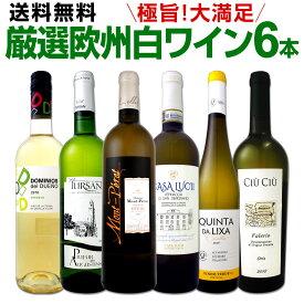 ワイン 【送料無料】第124弾!当店厳選!これぞ極旨辛口白ワイン!『白ワインを存分に楽しむ!』味わい深いスーパー・セレクト白6本セット
