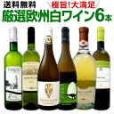 ワイン 【送料無料】第127弾!当店厳選!これぞ極旨辛口白ワイン!『白ワインを存分に楽しむ!』味わい深いスーパー・セレクト白6本セット