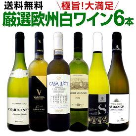 ワイン 【送料無料】第133弾!当店厳選!これぞ極旨辛口白ワイン!『白ワインを存分に楽しむ!』味わい深いスーパー・セレクト白6本セット