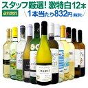 白ワイン セット 【送料無料】第104弾!超特大感謝!≪スタッフ厳選≫の激得白ワインセット 12本!