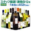 白ワイン セット 【送料無料】第108弾!超特大感謝!≪スタッフ厳選≫の激得白ワインセット 12本!