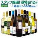 白ワイン セット 【送料無料】第109弾!超特大感謝!≪スタッフ厳選≫の激得白ワインセット 12本!