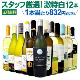 [クーポンで7%OFF]白ワイン セット 【送料無料】第111弾!超特大感謝!≪スタッフ厳選≫の激得白ワインセット 12本!