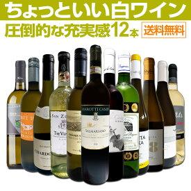 【送料無料】第10弾!当店オススメばかりを厳選したちょっといい白ワイン12本セット!