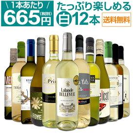 【送料無料】第7弾!1本あたり665円(税別)!!採算度外視の大感謝!厳選白ワイン12本セット