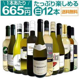 【送料無料】第11弾!1本あたり665円(税別)!!採算度外視の大感謝!厳選白ワイン12本セット