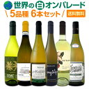 【送料無料】世界の白ワイン・オンパレード!毎日飲んでも飲み飽きない5品種6本セット!
