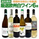 白ワインセット 【送料無料】第142弾!当店厳選!これぞ極旨辛口白ワイン!『白ワインを存分に楽しむ!』味わい深いス…