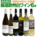 白ワインセット 【送料無料】第148弾!当店厳選!これぞ極旨辛口白ワイン!『白ワインを存分に楽しむ!』味わい深いスーパー・セレクト…