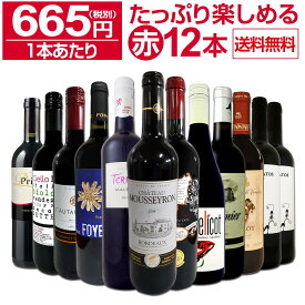 【送料無料】第12弾!1本あたり665円(税別)!!採算度外視の大感謝!厳選赤ワイン12本セットワイン ワインセット セット 赤ワインセット 赤ワイン 赤 飲み比べ ギフト プレゼント 750ml