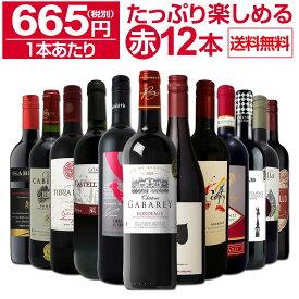 【送料無料】第16弾!1本あたり665円(税別)!!採算度外視の大感謝!厳選赤ワイン12本セットワイン ワインセット セット 赤ワインセット 赤ワイン 赤 飲み比べ ギフト プレゼント 750ml