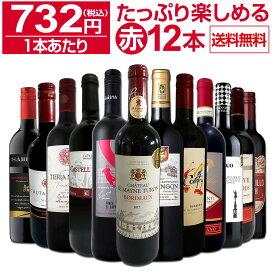 【送料無料】第17弾!1本あたり732円(税込)!!採算度外視の大感謝!厳選赤ワイン12本セットワイン ワインセット セット 赤ワインセット 赤ワイン 赤 飲み比べ ギフト プレゼント 750ml