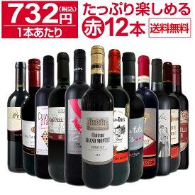 【送料無料】第18弾!1本あたり732円(税込)!!採算度外視の大感謝!厳選赤ワイン12本セットワイン ワインセット セット 赤ワインセット 赤ワイン 赤 飲み比べ ギフト プレゼント 750ml