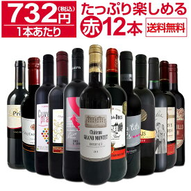 【送料無料】第19弾!1本あたり732円(税込)!!採算度外視の大感謝!厳選赤ワイン12本セットワイン ワインセット セット 赤ワインセット 赤ワイン 赤 飲み比べ ギフト プレゼント 750ml