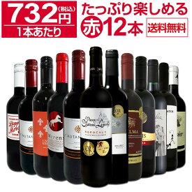 【送料無料】第22弾!1本あたり732円(税込)!!採算度外視の大感謝!厳選赤ワイン12本セットワイン ワインセット セット 赤ワインセット 赤ワイン 赤 飲み比べ ギフト プレゼント 750ml