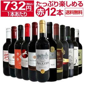 【送料無料】第23弾!1本あたり732円(税込)!!採算度外視の大感謝!厳選赤ワイン12本セットワイン ワインセット セット 赤ワインセット 赤ワイン 赤 飲み比べ ギフト プレゼント 750ml