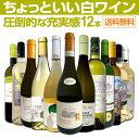 【送料無料】第19弾!当店オススメばかりを厳選したちょっといい白ワイン12本セット!
