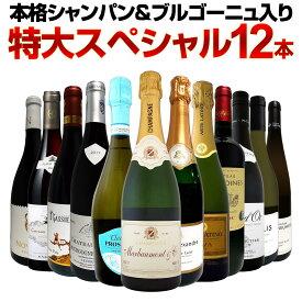 【送料無料】第10弾!本格シャンパン&ブルゴーニュ入り!特大スペシャル12本セット! ワイン ワインセット セット 赤ワインセット 赤ワイン 白ワインセット 白ワイン スパークリングワインセット 飲み比べ ギフト プレゼント 辛口 750ml