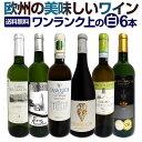 白ワインセット 【送料無料】第165弾!当店厳選!これぞ極旨辛口白ワイン!『白ワインを存分に楽しむ!』味わい深いス…