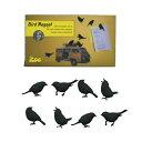 【DETAIL/ディテール】Bird Magnet/プルマン バードマグネット【ブラック】 1963 1101201 【あす楽対応】