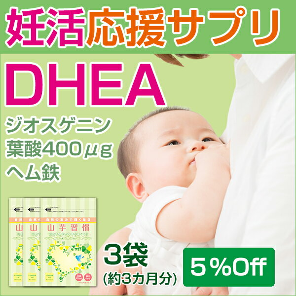 まとめ買い 山芋習慣 3袋セット(124粒入/約1ヶ月分×3袋セット)DHEA 妊活 赤ちゃん エイジングケア シスチン 若 妊婦 葉酸 鉄分 ヘム鉄 健康食品 サプリメント 乳酸菌 酵母 ジオスゲニン ギフト