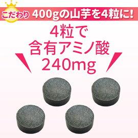 ジオスゲニン・葉酸・ヘム鉄・含流アミノ酸の山芋習慣