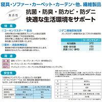 イチネンケミカルズ抗菌・カビパンチスプレー500ml繊維用・カビ防止スプレー4974672020337