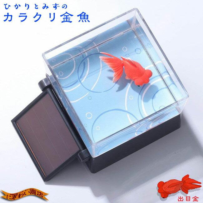 ひかりとみずのカラクリ金魚 出目金