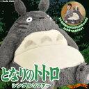 Totoro singlesoffa 1