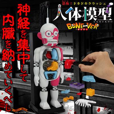 より怖い新型!New放課後の怪談シリーズ恐怖! ドキドキクラッシュ人体模型BONE-VER ( ボンバー )