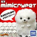 Pomeranian mimic01