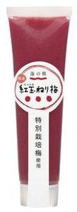 3001981-os 特別栽培 紅玉ねり梅(チューブ)100g【海の精】