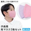 子供用布マスク2枚セット 綿100% 水玉 ピンク・紫 【送料無料】 花粉 PM2.5 黄砂 インフルエンザ アレルゲン …