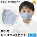 子供用布マスク2枚セット 綿100% 星柄 ブルー・グレー【送料無料】花粉 PM2.5 黄砂 インフルエンザ アレルゲン…