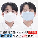 マスク 子供 大臣マスク 日本製 2枚セット 綿100% 送料無料【水色・白】立体マスク フィルターポケット付き 舟形 花…