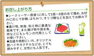 青切りシークヮーサー100(150ml)×10本