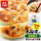 10個セット380円!米粉の皮で包んだ餃子【野菜餃子単品】