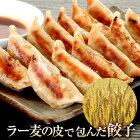 [注文殺到中][送料無料]大阪老舗餃子専門店ラー麦の皮で包んだ餃子国産素材使用!肉汁たっぷり