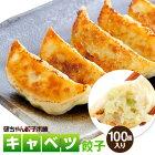 キャベツ餃子50個入り2袋