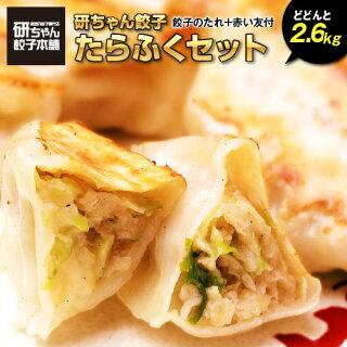 研ちゃん餃子たらふく満腹セット50個袋入×4 2.6キロ 餃子200個業務用