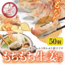 【鍋・水餃子】業務用 もちもち生姜餃子 50個袋入