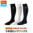 5本指 靴下 ジュニア ハイソックス 22〜24cm GUNSOKU 日本製