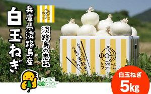 【送料無料】(北海道・沖縄・離島を除く) 淡路島新玉ねぎ 淡路島 白い たまねぎ 玉ねぎ 白いたまねぎ 新たまねぎ 白 5kg 5キロ