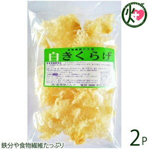 座間味こんぶ 白きくらげ 50g×2P 沖縄 土産 人気 キクラゲ 白キクラゲ 健康管理 植物繊維 ミネラル ビタミンD コラーゲン 栄養豊富 送料無料