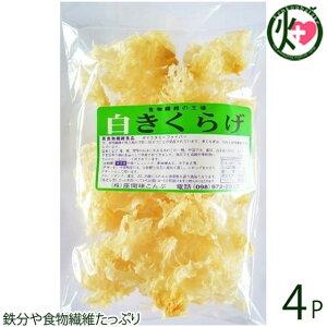 座間味こんぶ 白きくらげ 50g×4P 沖縄 土産 人気 キクラゲ 白キクラゲ 健康管理 植物繊維 ミネラル ビタミンD コラーゲン 栄養豊富 送料無料