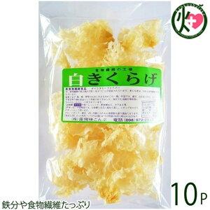 座間味こんぶ 白きくらげ 50g×10P 沖縄 土産 人気 キクラゲ 白キクラゲ 健康管理 植物繊維 ミネラル ビタミンD コラーゲン 栄養豊富 送料無料