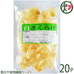 座間味こんぶ 白きくらげ 50g×20P 沖縄 土産 人気 キクラゲ 白キクラゲ 健康管理 植物繊維 ミネラル ビタミンD コラーゲン 栄養豊富 送料無料