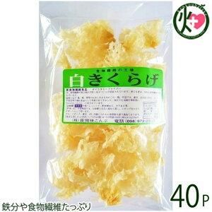 座間味こんぶ 白きくらげ 50g×40P 沖縄 土産 人気 キクラゲ 白キクラゲ 健康管理 植物繊維 ミネラル ビタミンD コラーゲン 栄養豊富 送料無料